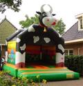 Loekie de koe Springkussen huren Tilburg